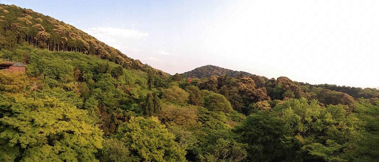 Kiyomizudera9